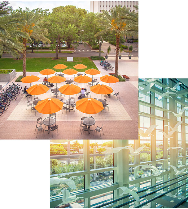 Photos of the University of Miami
